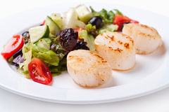 Salad of scallops on a white plate. Close up Royalty Free Stock Photography