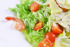 Salad with seafood Royalty Free Stock Photos