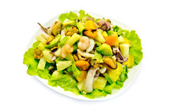 Salad seafood and avocado with lettuce Royalty Free Stock Photos