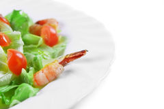 Salad with seafood Royalty Free Stock Photo