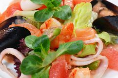 Salad from seafood and a salmon Stock Photo