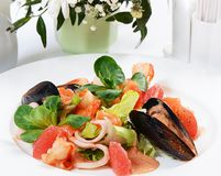 Salad from seafood and a salmon Royalty Free Stock Photo