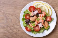 Salad from seafood: shrimps, mussels, octopuses top view. Royalty Free Stock Photos