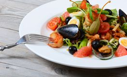 Salad with seafood with a squid, a tuna fillet, meat of mussels Stock Images