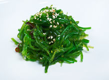 Salad with Seaweed Royalty Free Stock Photography