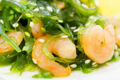 Salad of seaweed chuka with prawns under soy sauce and sesame Stock Image