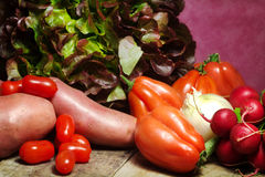 Salad selection with  raw ingredients Royalty Free Stock Photography