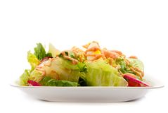 Salad Series 1 Royalty Free Stock Photo