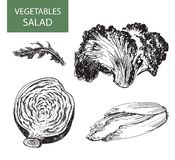 Salad - set of vector illustration Stock Photography
