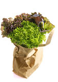 Salad in shopping bag Royalty Free Stock Image