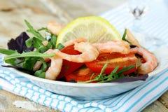 Salad with shrimp Stock Image