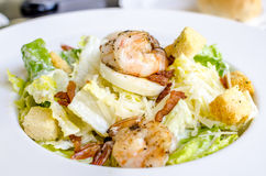 Salad of shrimp and bacon Royalty Free Stock Images