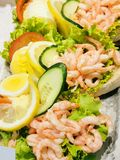 Salad shrimp in a cup royalty free stock images