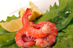 Salad of shrimp, mixed greens Stock Photography