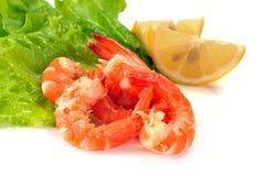 Salad of shrimp Stock Photo