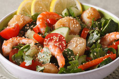 Salad with shrimp, scallops and fresh vegetables close up. horiz Stock Images