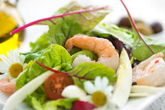 Salad with shrimp summer macro Stock Photos