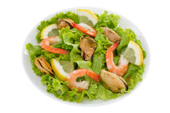Salad with shrimps Stock Photo