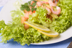 Salad with shrimps and avocado Royalty Free Stock Images