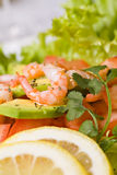 Salad with shrimps and avocado Royalty Free Stock Photography
