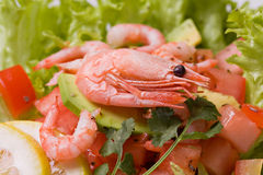 Salad with shrimps and avocado Royalty Free Stock Photos