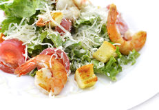 Salad with shrimps and croutons Royalty Free Stock Photos