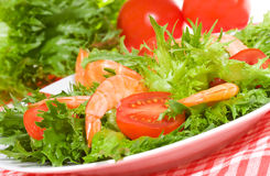 Salad with shrimps and tomato Stock Images