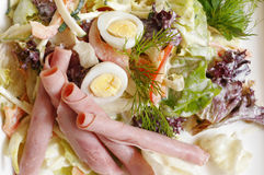 Salad with sliced ham & egg. Close up Royalty Free Stock Photo