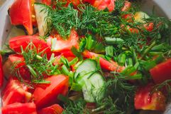 Salad of sliced tomatoes and cucumbers sprinkled with chopped herbs. Close-up, selective focus royalty free stock photos