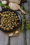 Salad of small mushrooms and herbs Royalty Free Stock Photos