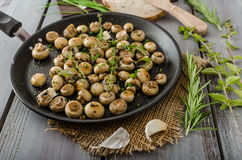 Salad of small mushrooms and herbs Royalty Free Stock Image