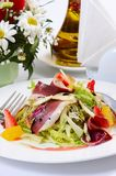 Salad with smoked duck breast Royalty Free Stock Image