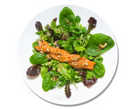 Salad  with smoked salmon , isolated Royalty Free Stock Images