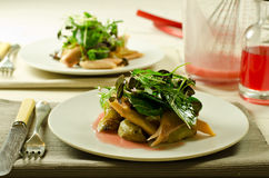 Salad of smoked trout and salad leaves Stock Photography