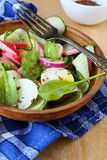 Salad with spinach and daikon Stock Images