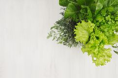 Salad, spinach, dill, parsley leaves on white wood plank, top view, copy space. Salad, spinach, dill, parsley leaves on white wood plank, top view, copy space royalty free stock images