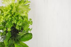 Salad, spinach, dill, parsley leaves on white wood plank, top view, decorative border. Salad, spinach, dill, parsley leaves on white wood plank, top view Royalty Free Stock Photo