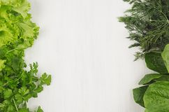 Salad, spinach, dill, parsley sheaves on white wood plank, top view, decorative border. Salad, spinach, dill, parsley sheaves on white wood plank, top view Royalty Free Stock Images