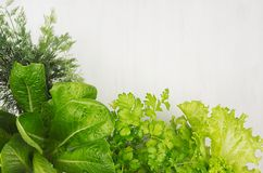 Salad, spinach, dill, parsley sprigs on white wood plank, top view, decorative border. Salad, spinach, dill, parsley sprigs on white wood plank, top view Stock Images