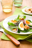Salad with spinach and egg Royalty Free Stock Photography
