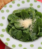 Salad of spinach Royalty Free Stock Images
