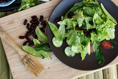Salad with spinach, red beans, tomato and pea pods Royalty Free Stock Photos