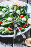 Salad from spinach, tomatoes and mozzarella Royalty Free Stock Images