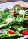 Salad from spinach, tomatoes and mozzarella Stock Image