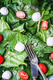 Salad from spinach, tomatoes and mozzarella Royalty Free Stock Photos
