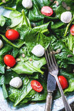 Salad from spinach, tomatoes and mozzarella Royalty Free Stock Image
