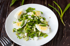 Salad of spring ramson and eggs. Closeup Stock Images