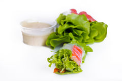 Salad spring roll with green oak and batavia vegetable (Eat by p Royalty Free Stock Images