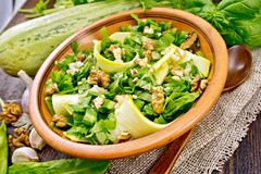 Salad with squash and sorrel on board Stock Photos