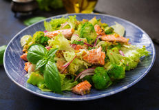 Salad of stewed fish salmon, broccoli, lettuce and dressing. Stock Photo